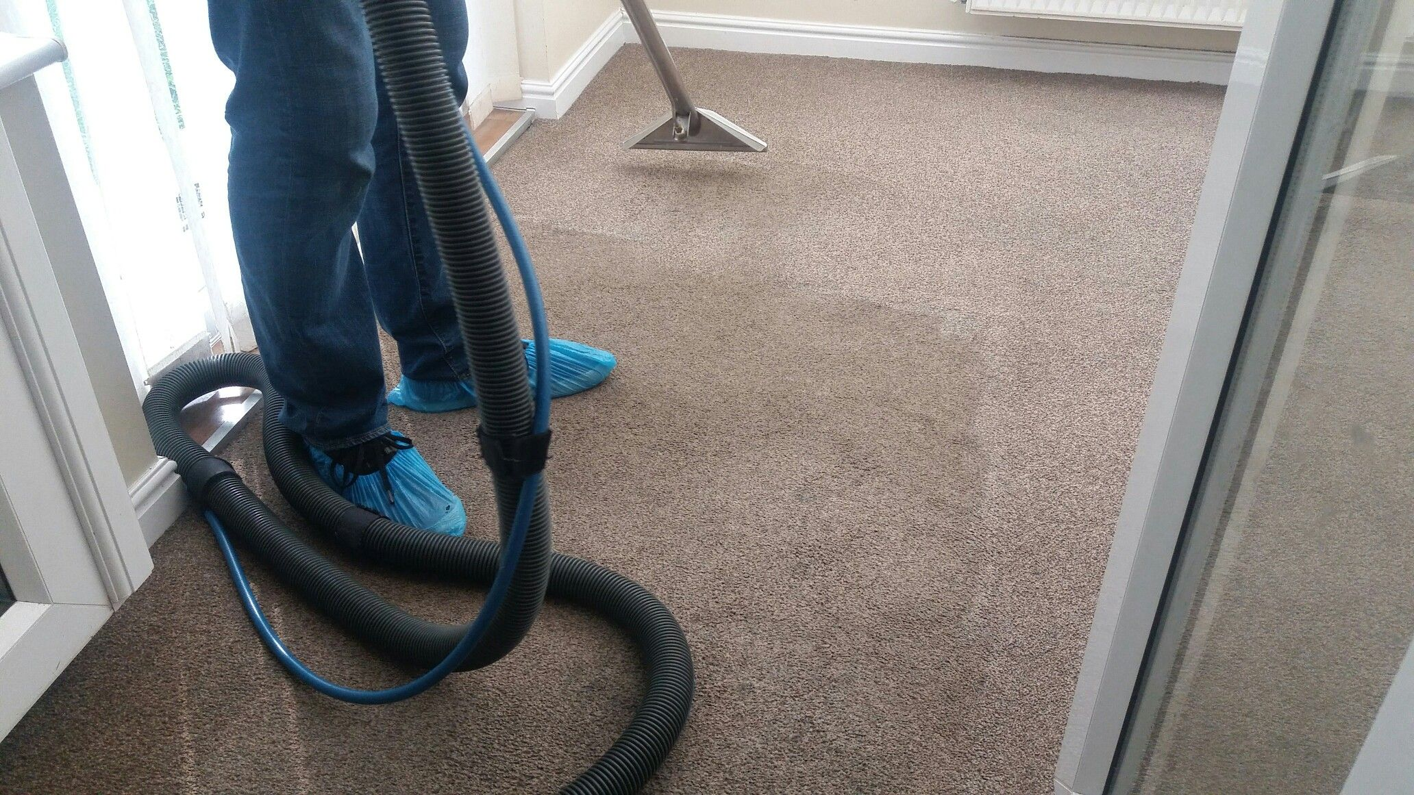 carpet cleaning hills district Sydney