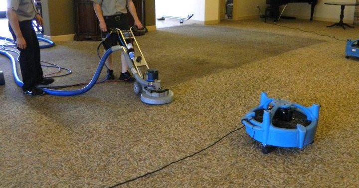 Best Upholister cleaning in north shore sydney