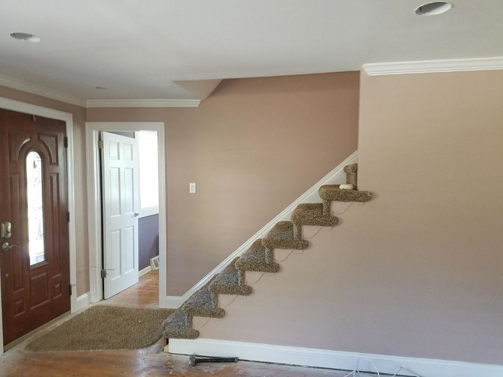 residential painting Wahroonga